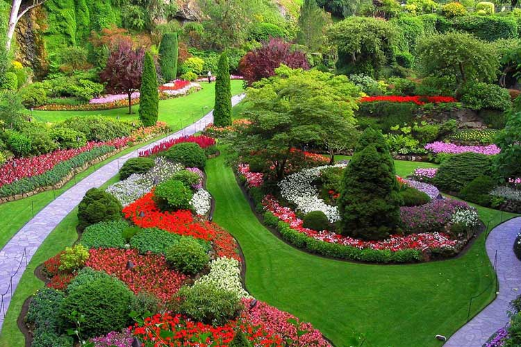 Lawn and Garden Experts