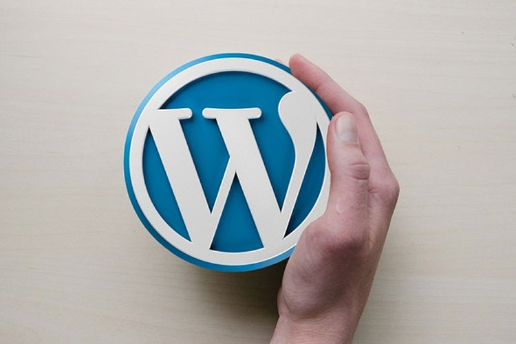 WordPress is An Amazing CMS to Work